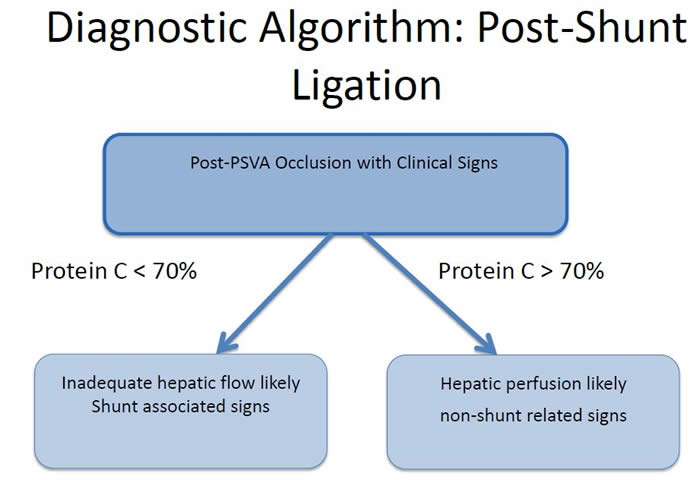 Diagnostic Algorithm: Post-Shunt Ligation