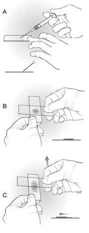 manual handling procedure step by step