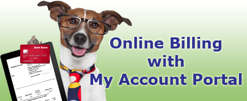 My Account Portal