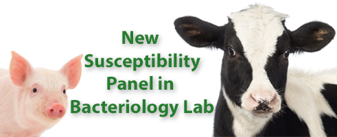 New Susceptibility Panel